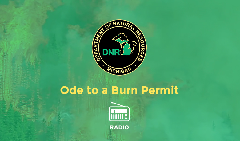 burnpermit-img
